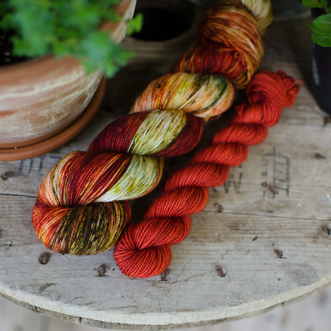 Heirloom Tomato Sock Set | Pre-order