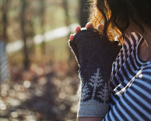 Black Mountain Mitts by Ashley Wilson