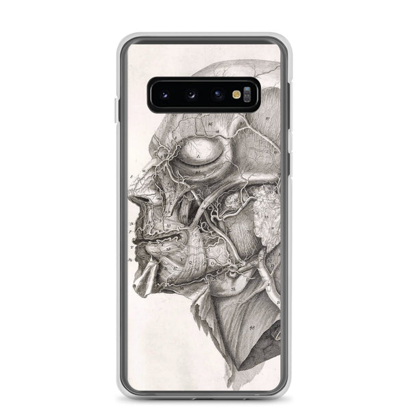 Samsung Case, Human Anatomy, Anatomy Of The Human Skull, Vintage Drawing