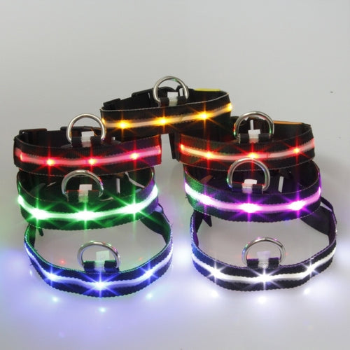 Fashion Colorful Nylon LED Dog Collar Light
