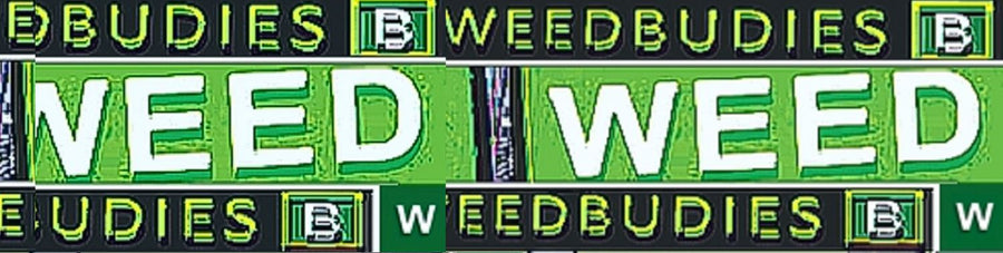 Weedbudies™ Stoned News (Members Blog)