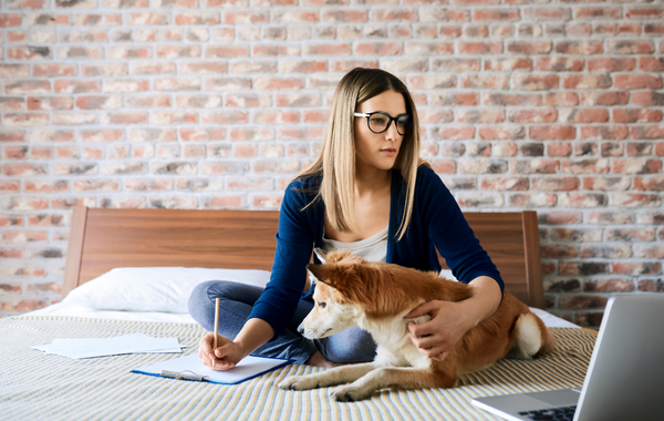 Pet Parent with Dog Researching on Laptop