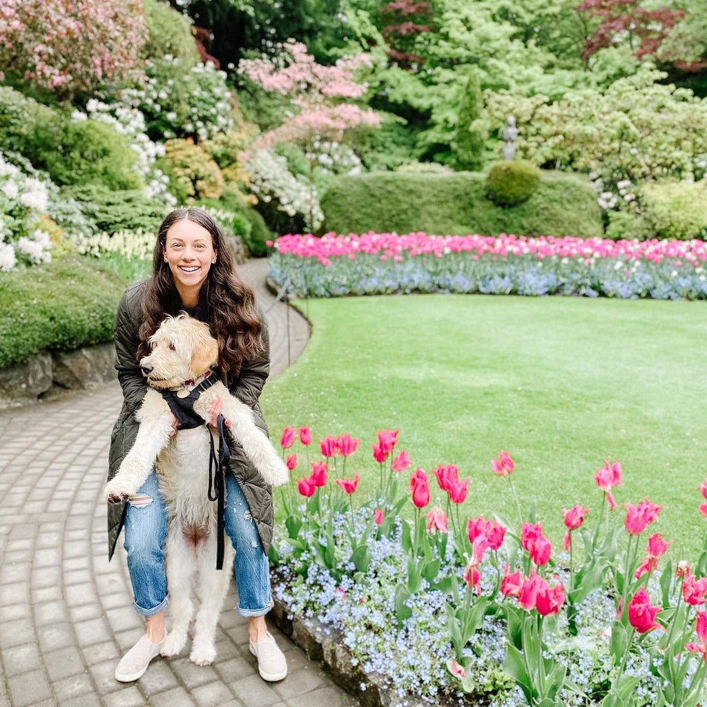 dog and his owner standing in the Butchart Gardens in Victoria BC