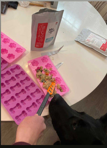 how to incorporate fresh dog food into treats