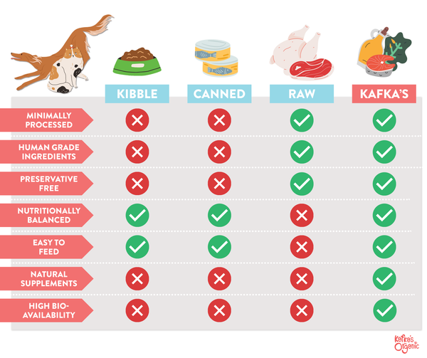 Infographic About Pet Food Diets