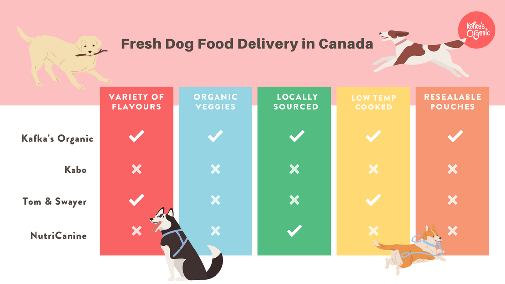 image depiciting the differences between some of the biggest fresh pet food delivery services in Canada