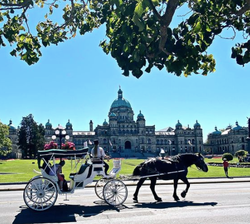 Carriage tour rides in Victoria
