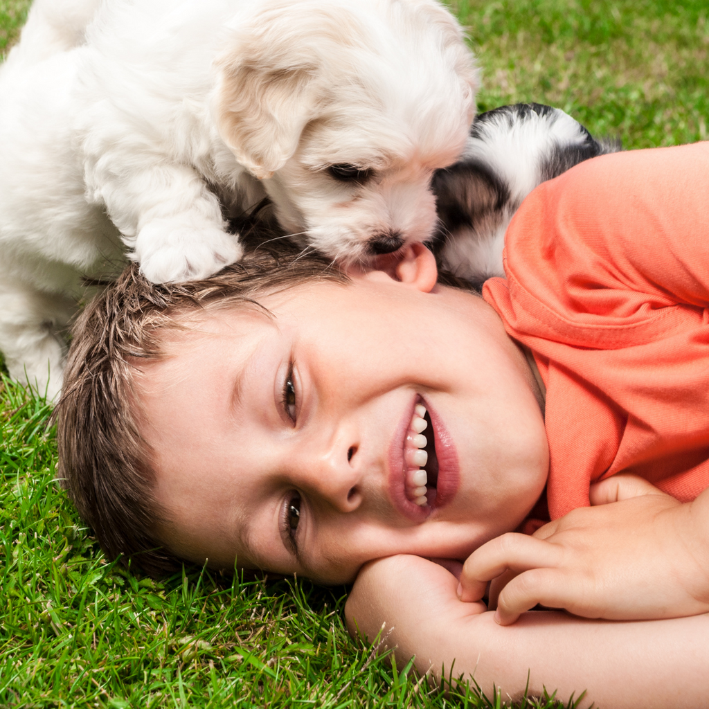 kid laying on the ground and is laughing as a puppy licks his face