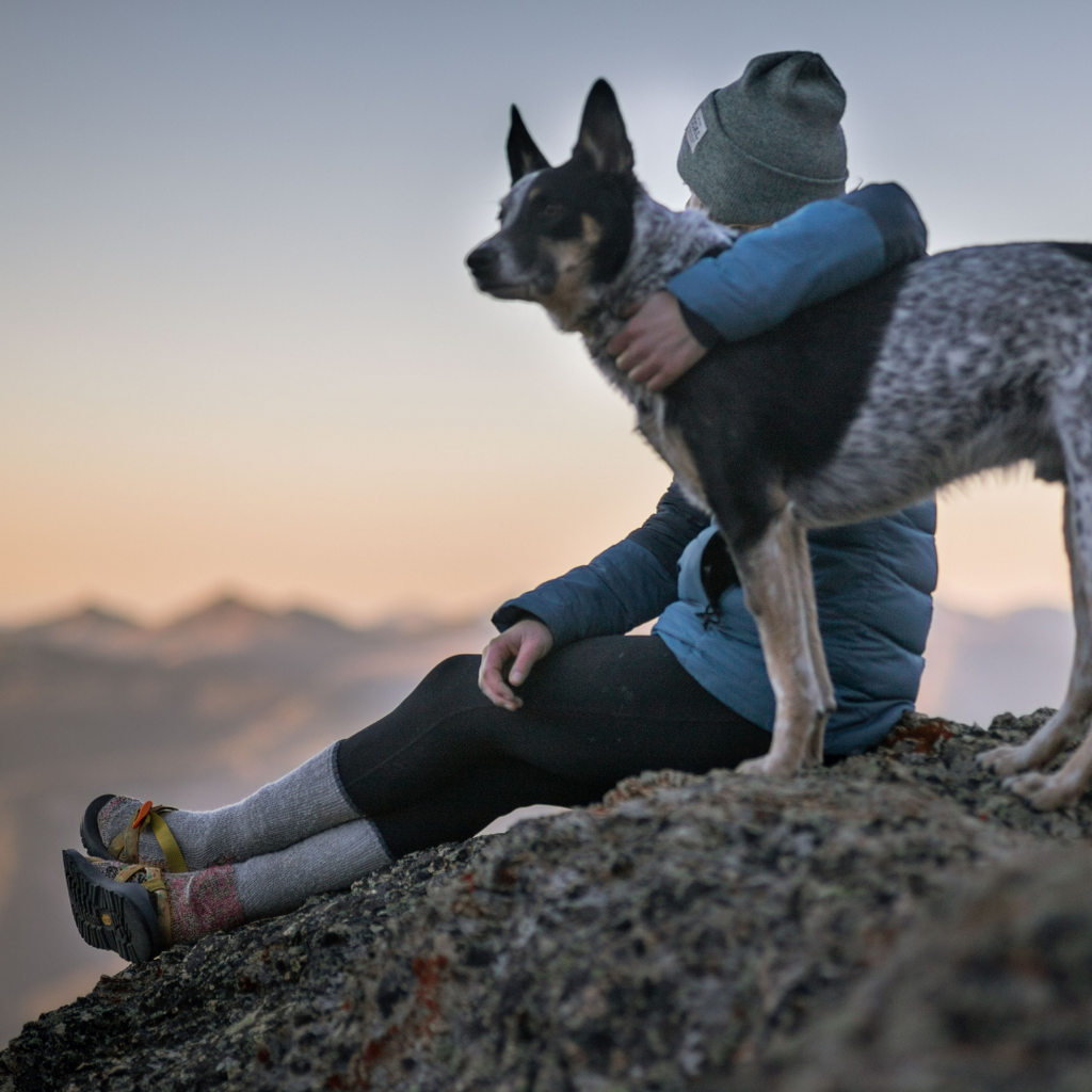 Dog sitting with a person on a mountain top