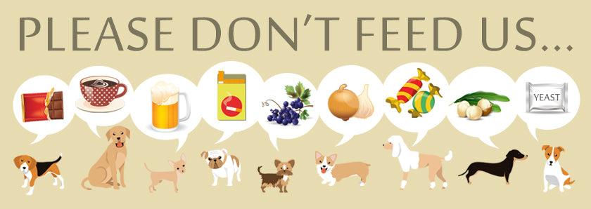 what-not-to-feed-dogs