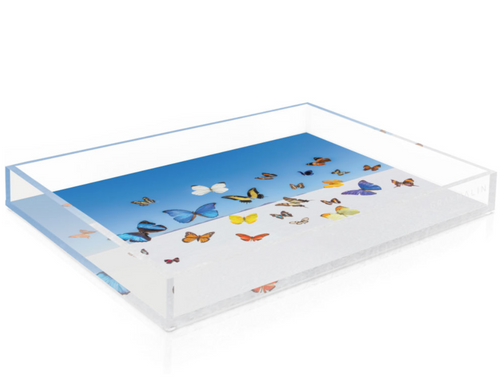 GRAY MALIN | BUTTERFLIES TRAY