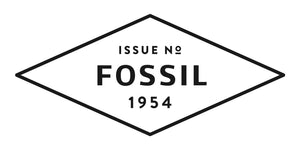 Fossil - CH3035 - Azzam Watches