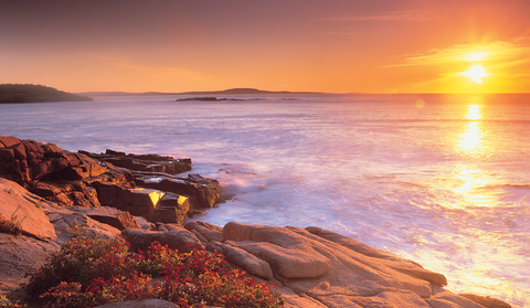 The Atlantic coastline near Thunder Hole in Maine's Acadia National Park