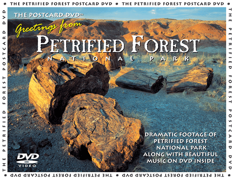 Petrified logs in Painted Desert, Petrified Forest National Park, AZ.