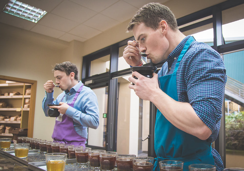 Cupping new coffee samples at the roastery