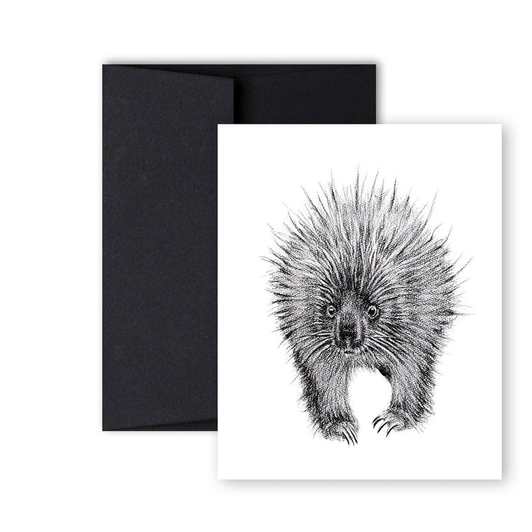 Greeting Card - Porcupine