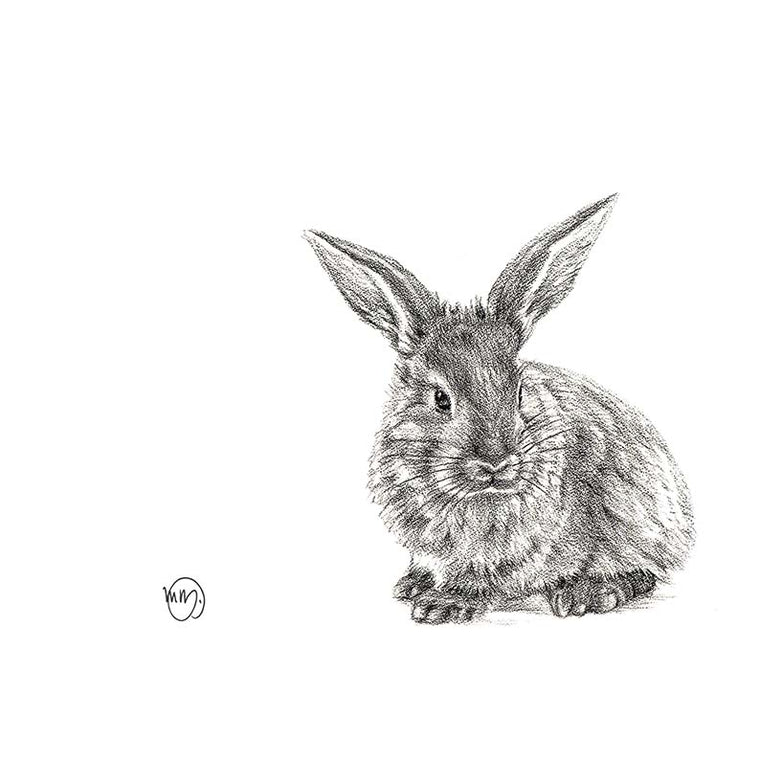 Art Print - Rabbit