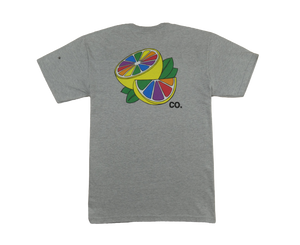 Rainbowade Tee (Grey)