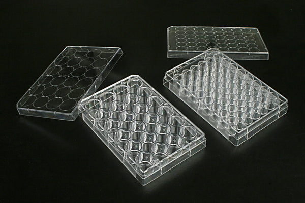 24 Well Multi Well Cell  Culture Plates, 1 plate/bag, 100/cs