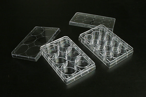 12 Well Multi Well Cell  Culture Plates, 1 plate/bag, 100/cs