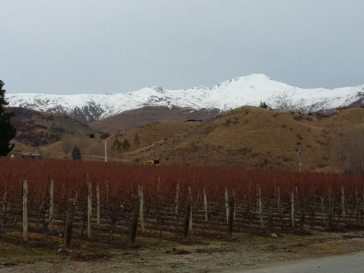 Central Otago - Mid Winter Day Two