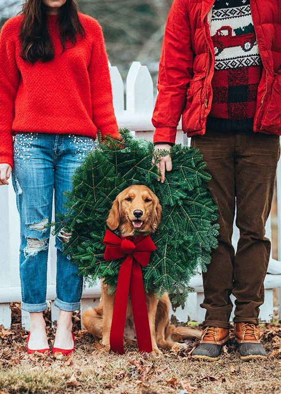 Best Practice Guide to Family Photos with Your Pup!