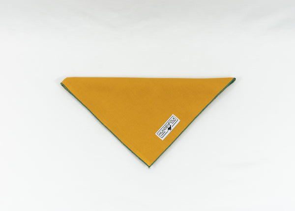 Golden Yellow Dog Bandana - Teal Trim