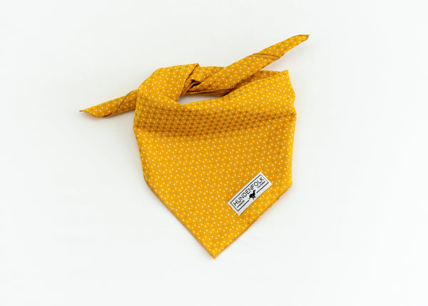 Gold Rush Dog Bandana