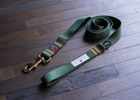 Dog Leash - Green