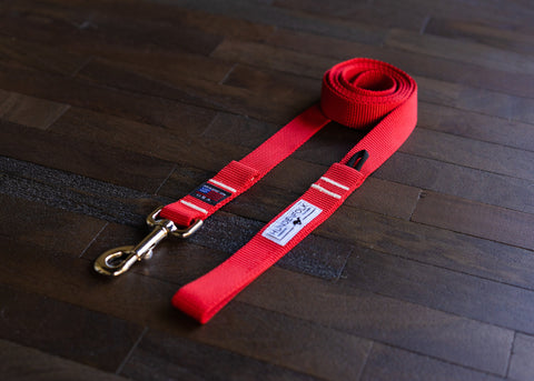 Dog Leash/ Red Dog Leash/ Nylon Webbing Dog Leash/ Dog Lead/ Navy Dog Leash/ Everyday Dog Leash/ Adventure Dog Leash/ Easy Dog Leash