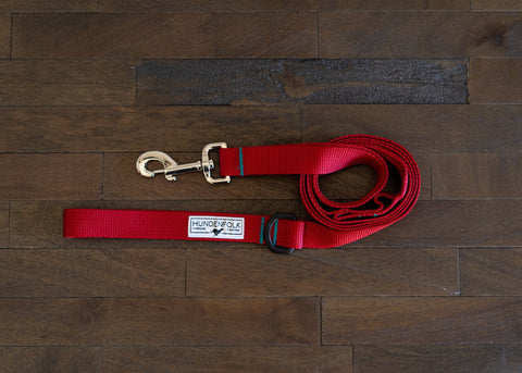 Dog Leash - Red with Teal Stitching and Traffic Lead