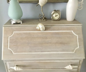 White Smooth Turbo Shell Drawer Pull
