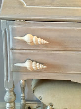 Spiral Shell Drawer Pull