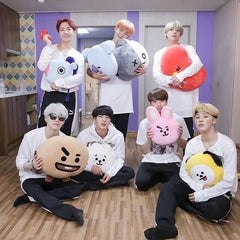 Pillow BTS