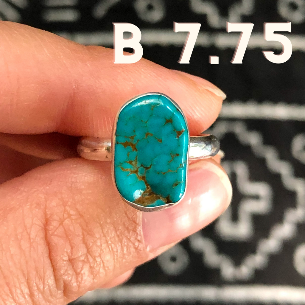 Blue Bird Nugget Turquoise Rings
