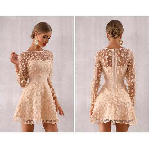 Image of Alvona Lace O Neck Mini Dress