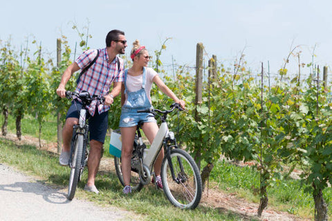 Family holidays in a vineyard on an Ebike