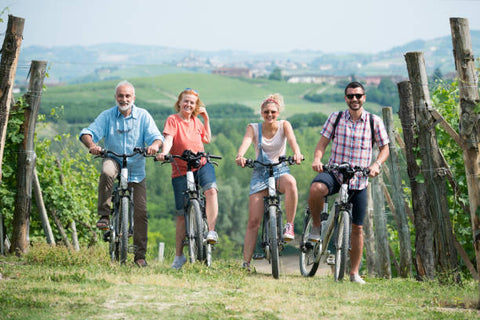 Family holidays on an ebike visiting a vineyard