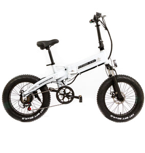 Beach Rider 20 F007 Foldable Electric Bike