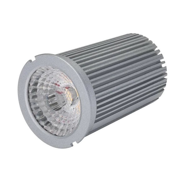 Domus Lighting RETRO-10 10W Dimmable LED Lamp and Driver - Oz Lights Direct