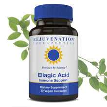 Rejuvenation Therapeutics Ellagic Acid Capsules | Improve Immunity & Eliminate Oxidative Stress | Premium Organic & Vegan Friendly | 30 Capsules 250 Mg