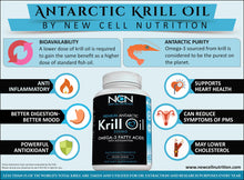 100% Pure Antarctic Krill Oil Omega 3 with Astaxanthin by NCN New Cell Nutrition Easily Absorbed EPA, DHA 1000 mg/2 Capsules