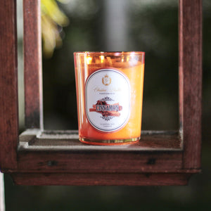 Scented Soy Candle Cinnamon