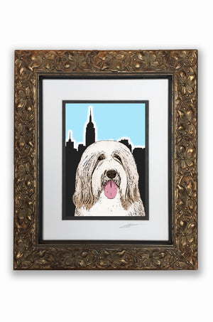 Bearded Collie Pupart Portrait