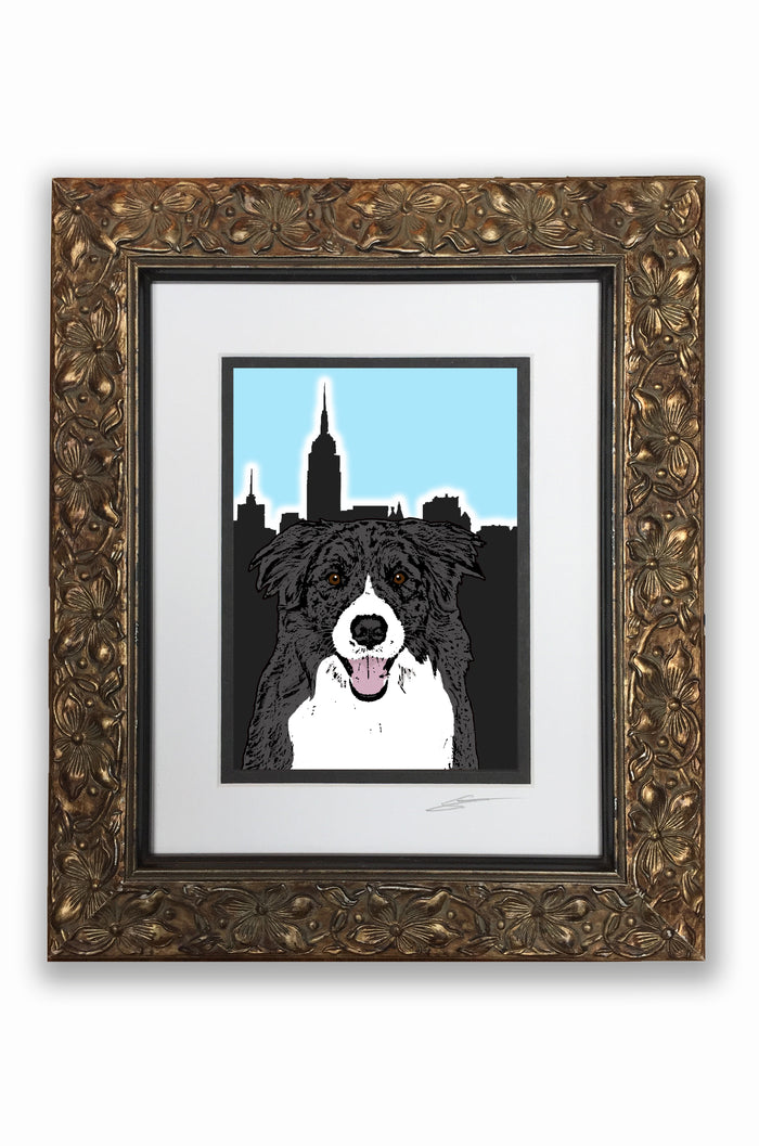 Border Collie Pupart Portrait
