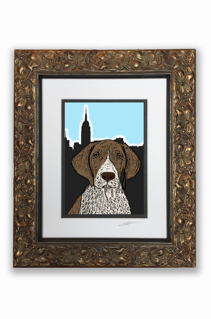 German Shorthair Pupart Portrait