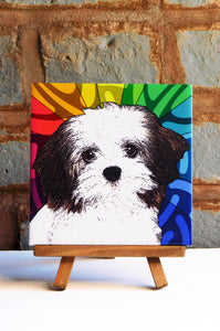 Havanese Ceramic Art Tile