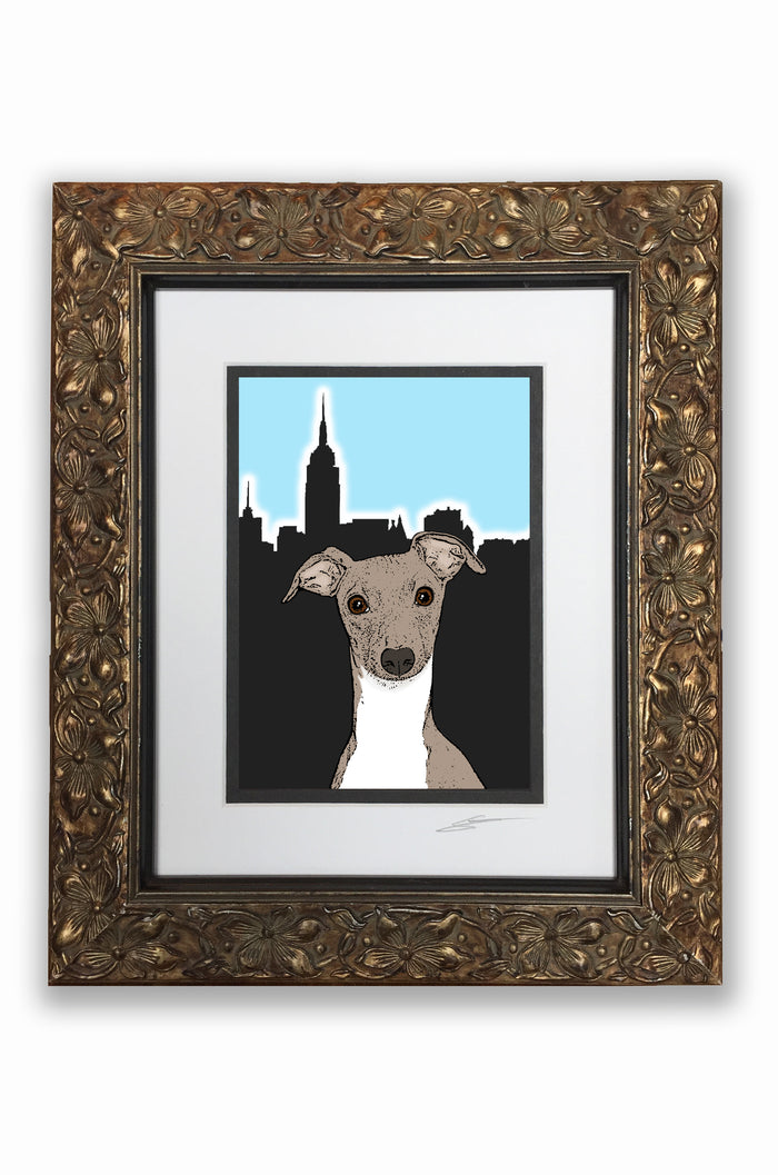 Italian Greyhound Pupart Portrait