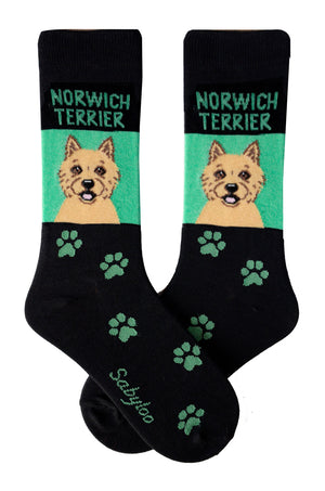 Norwich Terrier Dog Socks