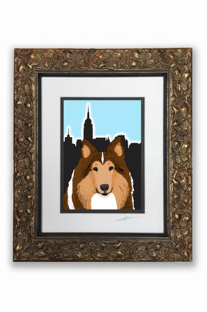 Rough Collie Pupart Portrait